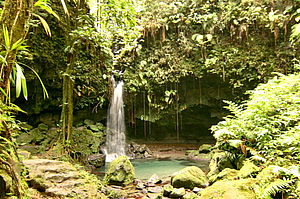 Foto vom Emerald Pool im Morne Trois Nationalpark auf Dominika in der Karibik
