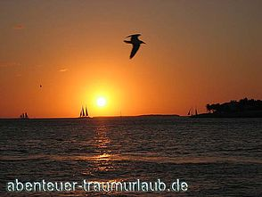 Fotos: Sunset am Mallory Square auf Key West.