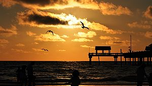 Foto: Sonnenuntergang in Naples - Florida