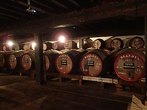 Madeira Wine Company in Funchal